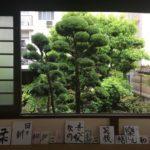 お寺「蔵鷺庵本堂」で「ヨガ&書」を開催しました