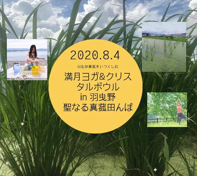 満月ヨガ&クリスタルボウルin羽曳野真菰田んぼ