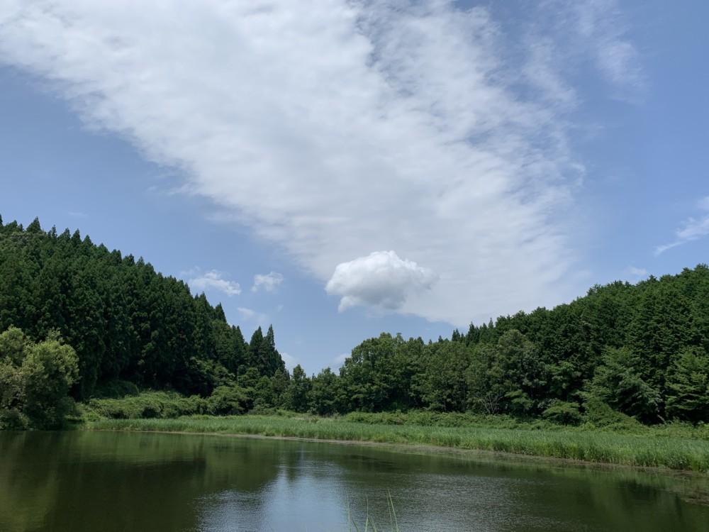 奈良~龍鎮神社~