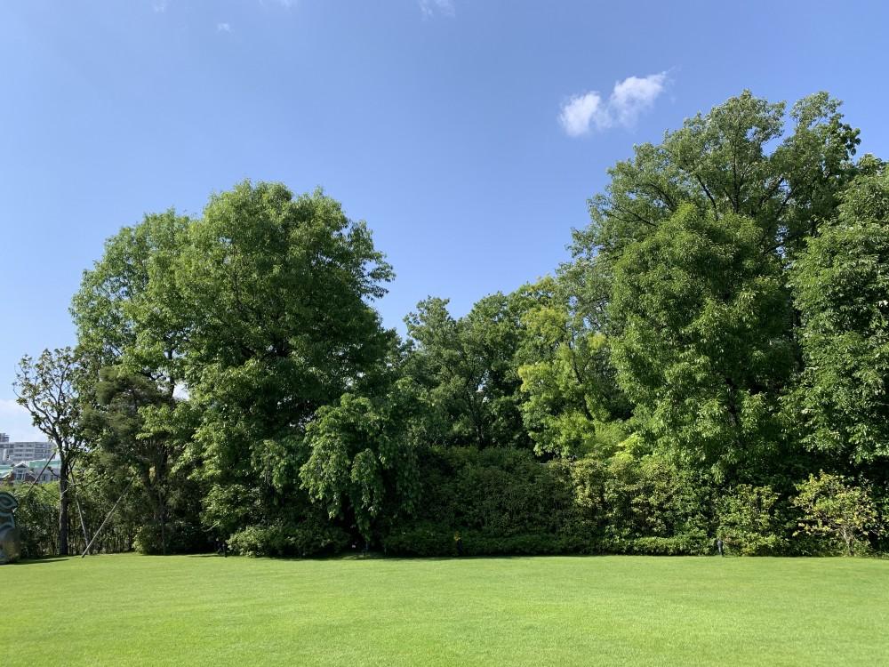 藤田邸跡公園~ガーデンオリエンタル
